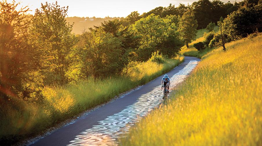 Cycling on Box Hill