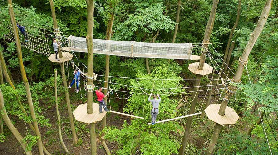 Go Ape at Chessington World of Adventures